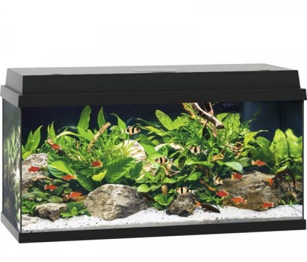 Аквариум для рыб JUWEL Primo 110 110л черный 81х36х45см LED 10,5w Фильтр Bioflow Super Нагр100W аквариум juwel рио 300 черный 300л