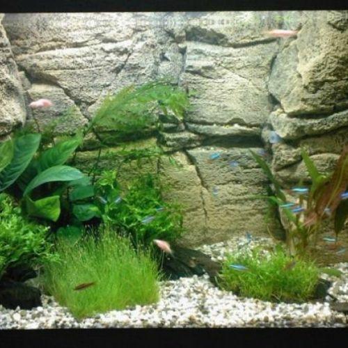 Фон для аквариума Karlie 30см Цена за 10см камни+черный аквариумистика цена