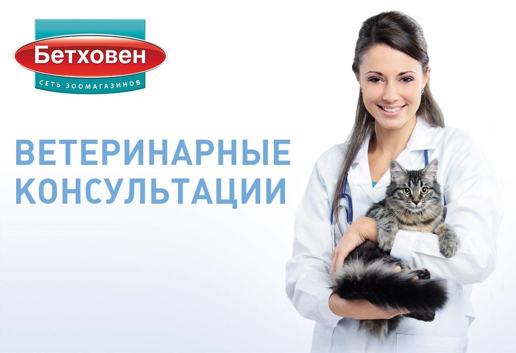 предназначение день ветеринарного работника россии тверская область