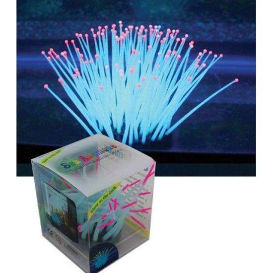 Декор для аквариумов JELLYFISH Морской анемон разноцветный, светящийся в темноте,средн. 5,5х5,5х11см
