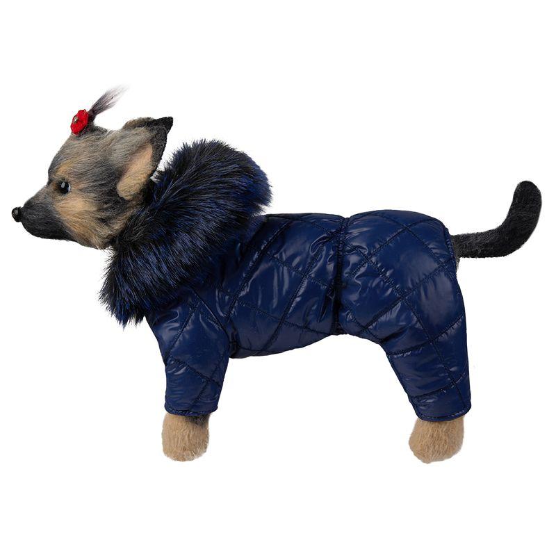 Комбинезон для собак Dogmoda Эврика (унисекс)-24см комбинезон для собак dogmoda сова унисекс цвет оранжевый бежевый размер 2 m