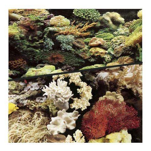Фон для аквариума HAGEN двухсторонний рифовый/рифовый 45см (цена за 10см) аквариумистика цена