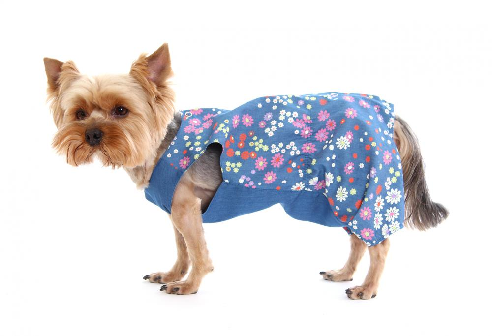 Комбинезон для собак YORIKI Ромашка девочка размер S 21см