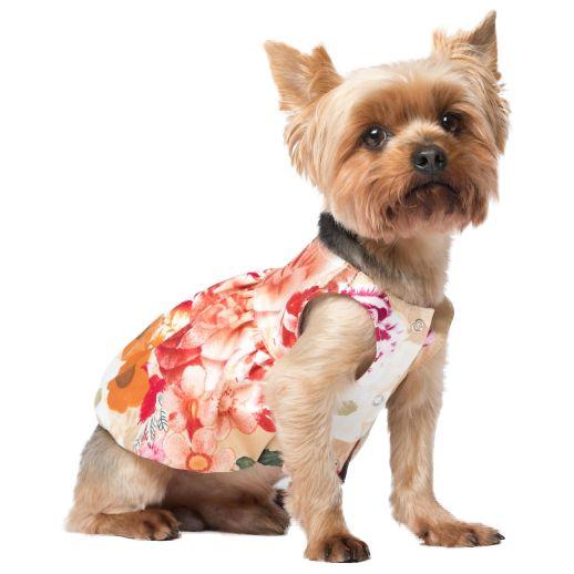 Платье для собак YORIKI Прованс девочка размер S 21см