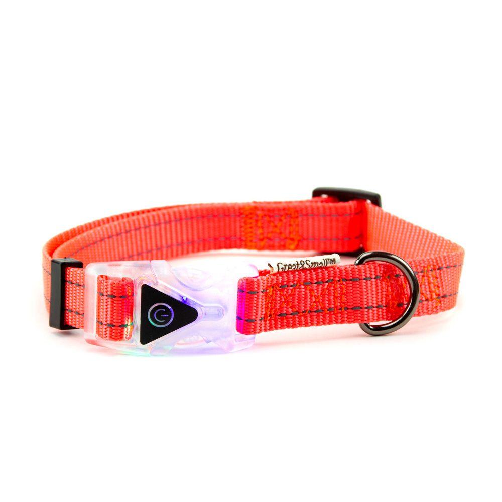 цена на Ошейник для собак Great&Small со светящейся застежкой 450-650мм оранжевый