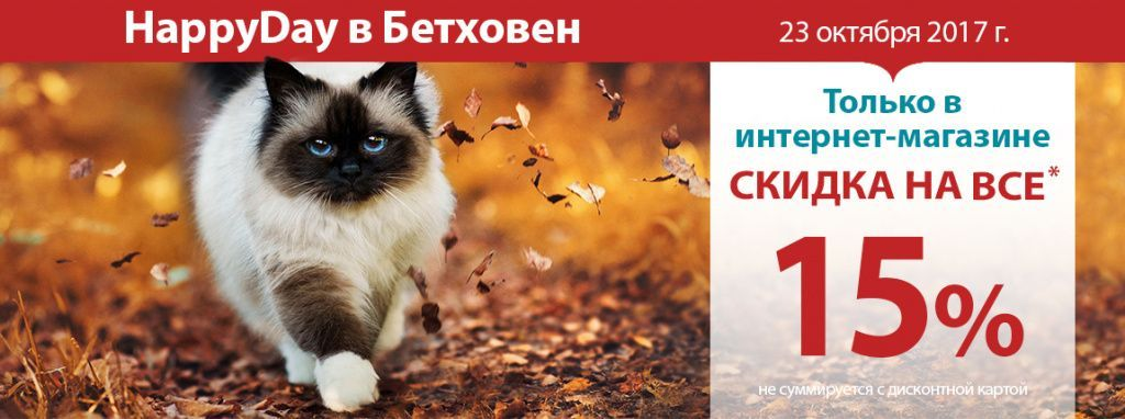 1150х430px_happy day cat.jpg