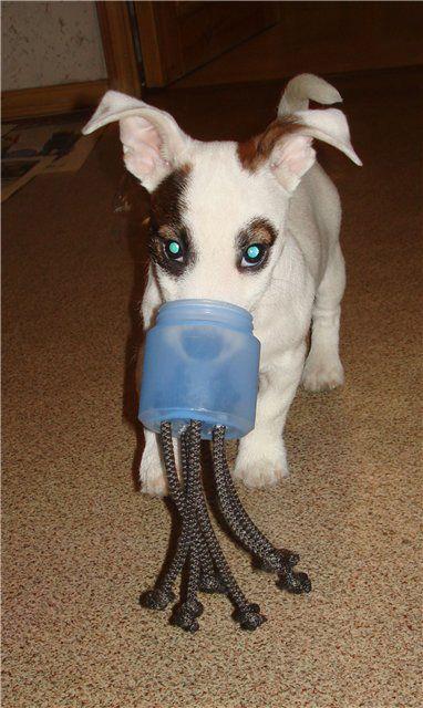 Игрушки для собак своими руками мастер класс